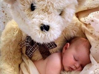 gros nounours bébé dormant